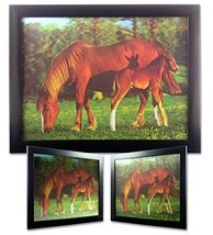 Horse and Foal on the Ranch 3D Dimensional Holo... - $14.99