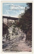 WATKINS GLEN NEW YORK - JACOBS LADDER - RAILWAY BRIDGE c1920s vintage po... - $3.63