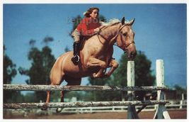 COWGIRL RIDING HORSE -BLUEBLOOD HURDLE JUMPER - WESTERN SCENE c1960s pos... - $5.47