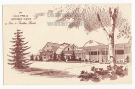 DUNDEE-IL~FIN N FEATHER FARM~MILK PAIL & COUNTRY SHOP~ADVERTISING postca... - $2.71