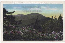 Mt MITCHELL-HIGHEST PEAK EAST of ROCKY MOUNTAINS~NORTH CAROLINA scenic p... - $3.45