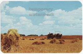 Amish Farms   Horse Cart Wheat Harvest  C.1960s  Indiana Old Postcard Farming - $2.76