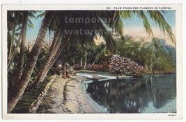 PALM TREES & FLOWERS -LAKE-TROPICAL PLANTS - c1930s SCENIC FLORIDA VIEW ... - $2.71