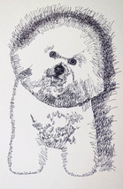 Bichon Frise Dog Art Portrait Print #57 Kline adds dog name free. WORD D... - $49.95