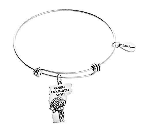 State of Vermont Charm Bangle Bracelet (silver-plated-base) [Jewelry]