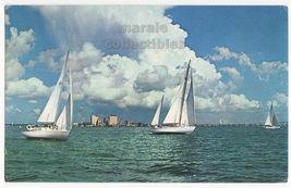 Sailboats and City Skyline Corpus Christi Bay Texas TX c1960s postcard L... - $5.47