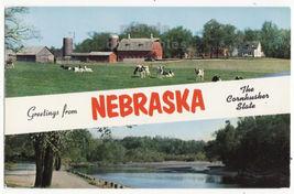 Greetings from Nebraska NE The Cornhusker State c1960s unused postcard M... - $3.22