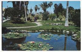 Daytona Beach Florida, Lily Pond in Riverfront Park c1950s FL postcard 8445 - $2.71
