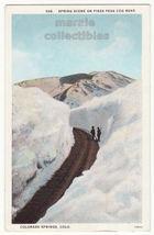 Spring Scene on Pikes Peak Cog Railroad Colorado Springs CO c1920s postc... - $4.55