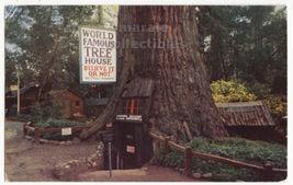 Redwood Highway California, World Famous Tree House 1960s postcard M8637 - $2.29