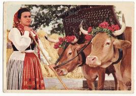 Portugal Santa Marta de Portuzelo Village Ethnic Dress Woman Cows 1960s postcard - $3.45