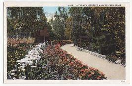 FLOWER BORDERED WALK IN CALIFORNIA ~ GARDEN WALKWAY~ c1920s-30s postcard - $2.71