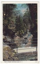 POET'S DREAM~WATKINS GLEN NEW YORK ~ ca 1910s unused postcard NY - $2.71