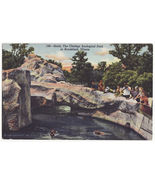 CHICAGO IL-BROOKFIELD ZOOLOGICAL PARK- VISITORS -1940s linen old postcard - $3.63