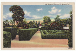 Boxwood Garden, Mt Vernon VA  1941 linen unused postcard - $2.71