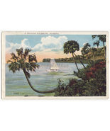 FLORIDA SCENIC ~ LEANING PALMETTO TREE AND SAILBOAT ~ 1930s vintage post... - $3.04