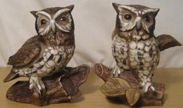 Vintage Porcelain HOMCO Owls Set of 2 Figurines #1114 Wildlife Decor - $19.76