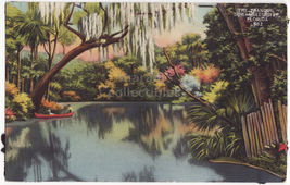 BOAT ON THE TRANQUIL SUWANNEE RIVER FLORIDA - c1940s postcard ~FL - $3.22