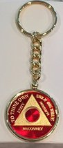 Any Year 1 - 65 Red Gold Plated AA Medallion In Keychain Removable Sobriety C... - $29.99