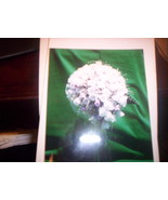 Silk Bride's Bouquet - $50.00