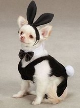Dog  Bunny Party Hounds Halloween Costume XS-XL - $18.99