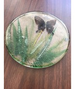 Retro Vintage Acrylic Lucite Large Round Butterfly With Fronds Trivet - $18.75