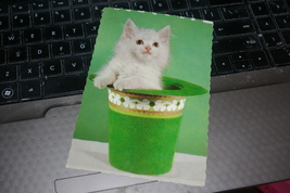 Vintage Hallmark Postcard Kitten In Green Hat St. Patrick's Day Photo 1972 - $5.00