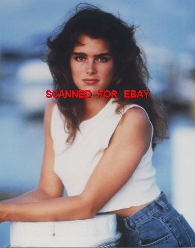 BROOKE SHIELDS BEAUTIFUL 8X10 PHOTO 7Y-523 Pretty Baby Star