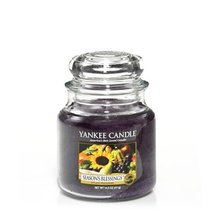Yankee Candle 14.5 oz Jar Candle, Season's Blessings [Misc.] - $19.55