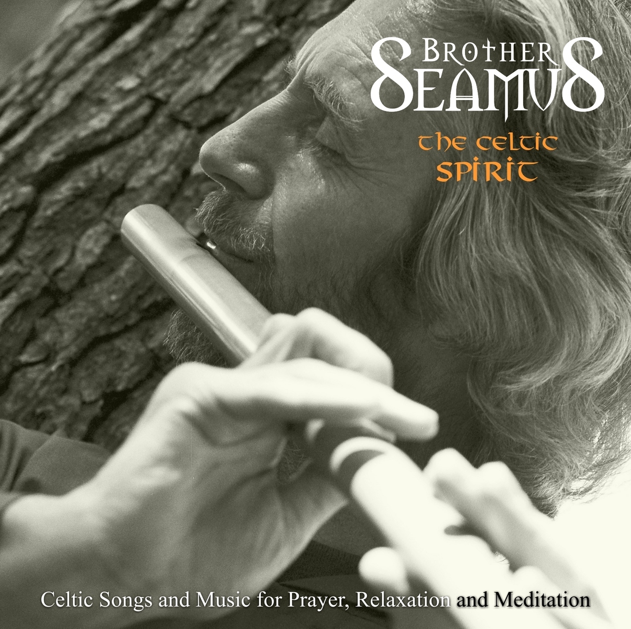 The celtic spirit cd  by brother seamus