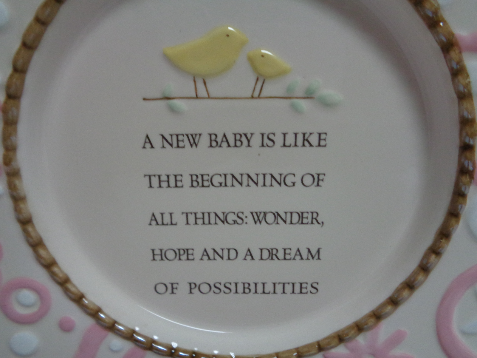 Grasslands Road Welcome New Baby Pink Plate Decor NIB