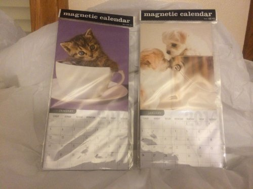 Magnetic Calendar (2 Pack)