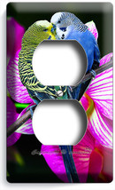 Love Birds Parrots Orchid Flowers Duplex Outlet Wall Plate Cover Room Home Decor - $8.99