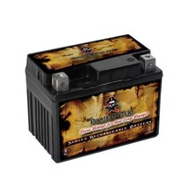 Ytx4 L Bs Atv Battery For Brp Can Am 50cc Ds50 Quest 2002 - $22.90