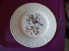 Wedgwood Londonderry dinner plate 8 available - $8.86