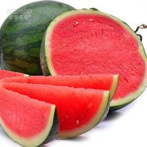 BEST PRICE 20 Seeds BELLFARM Pinkish Watermelon,DIY Watermelon Seeds E42... - $6.50