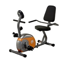 Recumbent Exercise Bike with Resistance Stationary Cardio Exercise Worko... - $201.87