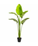 "64"" Travellers Palm Tree UV Resistant (Indoor/Outdoor) - $128.49"