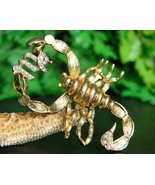 Vintage Scorpio Scorpion Symbol Sign Brooch Pin... - $32.95