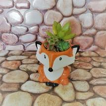 Mini Fox Planter with Succulent Arrangement, Succulent Gift, Animal Planter Pot image 2