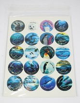 Vintage 1993 LOT of 20 Limited Edition to 25,000 WYLAND Hawaii Milk Cap ... - $5.72