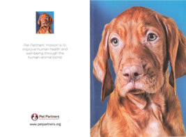 American Greetings For Bonding Pet Partners Greeting Card With Envelope - $13.54