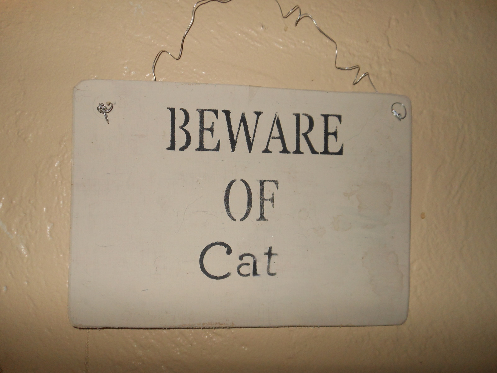 beware the cat A parasite spread by cats is infecting 1,000 new people every day in britain – about 350,000 a year – according to an official assessment of the risks.