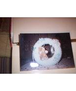 Baby's Wreath - $15.00