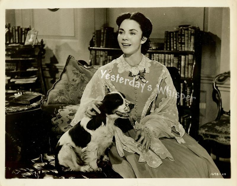 Jennifer Jones Dog Barretts Wimpole St Original Photo