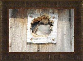 Peek A Boo By Todd Thunstedt 17.5x23.5 Wildlife Wren Bird House Framed A... - $59.00