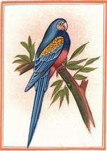 Parrot Bird Painting Handmade Watercolor Indian Miniature Ethnic Folk De... - $49.99