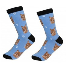 Orange Tabby Cat Socks Unisex Dog Cotton/Poly One size fits most - $11.99