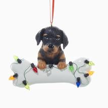 Doberman Pinscher w/Bone & Lights Ornament - $10.95
