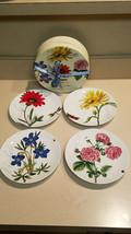 Pier 1 Imports Set of Four (4) Floral Porcelain Salad Plates (NEW) - $39.55
